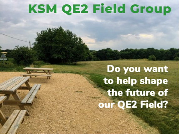 QE2 Field Group - help wanted